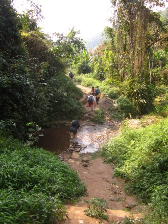 Jungletrekking in Nam Ha Protected Area