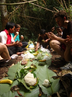 Jungle lunch