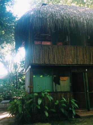 Onze junglecondo in Palenque