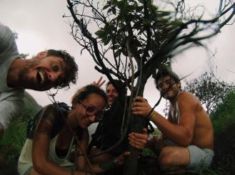 Onverwachte hoosbui op de vulkaan. Wat doe je dan? Schuilen onder een boom natuurlijk.