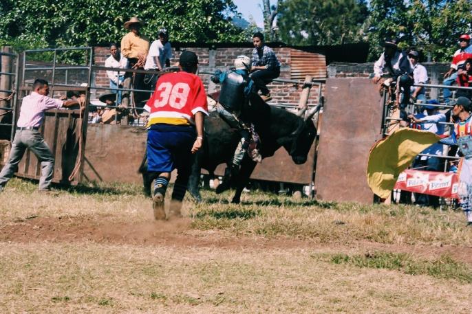 Ron kwam in Juayua terecht bij een rodeo. In de volle zon iedere keer een half uur wachten op een cowboy die na 10 seconden van de stier ligt. (Maaike blij dat ze ziek was)